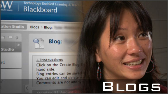Using Blogs for peer feedback and discussion