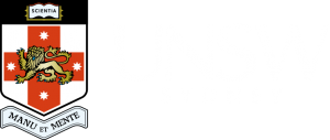 UNSW logo for footer
